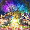 """光と花々に包まれる観覧車も登場する""""夜の遊園地""""♪ 福岡・かしいかえんで「Flower Night Circus DIRECTED by NAKED」開催"""