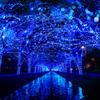 今年も渋谷が青の世界に染まる!大好評「青の洞窟 SHIBUYA」開催!大晦日はオールナイト点灯&年越しカウントダウンも♪