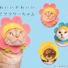 にゃんこがハッピーな春を咲かせる♪ 「ねこのかぶりもの」シリーズ最新作『かわいい かわいい ねこフラワーちゃん』登場!