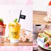 鮮やかな桜色の「スムージーボンボン」や「ブーケサラダ」で春爛漫♪ BOTANIST cafe(ボタニスト カフェ)にスプリングメニュー期間限定登場