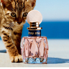 子ネコのように好奇心と冒険心あふれるエネルギッシュな香り♪ 新フレグランス第3弾「ミュウミュウ ロー ロゼ オードトワレ」いよいよ発売