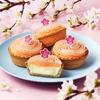 春色桜あん×もちもちぎゅうひのお花見スイーツ!『PABLO mini-桜もち』期間限定発売