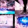 古き良き日本文化×最新デジタルアートで魅せる新しいお花見空間!『SAKURA AQUARIUM by NAKED』アクアパーク品川で期間限定開催