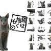 沢尻エリカが惚れて、吉沢亮が擬人化として演じた、美形猫・良男にみんなも癒されちゃおう☆ 映画『猫は抱くもの』のLINEスタンプが登場!