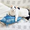 """フェリシモ猫部""""USEDo(ユーズド)×猫部 にゃんとびっくり!本格デニム工場で作ったデニムのカツオ""""1名様"""