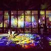 ひまわりや花火が東京の夜景をカラフルに彩る♡ 『TOKYO TOWER CITY LIGHT FANTASIA ~SUMMER OF JAPAN~』ネイキッドプロデュースで開催