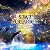 輝きにつつまれる、星空の海へ☆ 『STAR AQUARIUM -Bright Christmas-  Directed BY NAKED(スターアクアリウム –ブライトクリスマス- ディレクテッド バイ ネイキッド)』マクセル アクアパーク品川にて開催!!