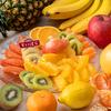 「紅まどんな」や「ふじりんご」など冬のフルーツが目白押し☆ フルーツパラダイス第6弾『スイパラで冬のフルーツ食べ放題』全国9店舗にて開催!