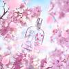 繊細な桜の花びらにジューシーなチェリーが香る♡ ロクシタン『チェリープリズム』シリーズ数量限定で発売!