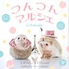まんまる&つんつんのハリネズミに癒される♡ 人気作家のキュートなハリネズミ作品が大集合した『つんつんマルシェ in 福岡』開催!