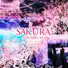 今年は愛らしいお花見ペンギンがお出迎え♡ 桜満開の幻想的な空間『SAKURA AQUARIUM Directed by NAKED』マクセル アクアパーク品川にて開催!!