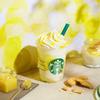 濃厚ヨーグルト×チーズ×甘酒 3つの発酵素材を組み合わせ♡ スターバックスから『レモン ヨーグルト 発酵フラペチーノ®』新発売