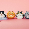 本物のにゃんこみたいなボリューム感♡『キュッと結ぶとまるくなる 猫のまんまるきんちゃく』フェリシモYOU+MORE!から誕生