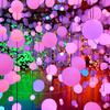 色鮮やかな空間で特別な七夕体験を♡『カルピス®100th 七夕に会おう展』3331 Arts Chiyodaにて期間限定で開催!!<レポ>