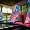 日没前後で変化する、カラフルで非日常的なアート空間♪『チームラボ かみさまがすまう森』武雄温泉にて開催中