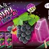 まるでジェラートのような味わい&ぶどう本来の果汁感♪『大人なガリガリ君巨峰』新発売
