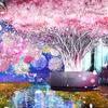 都会の中で出会う、秘密のガーデン♡『FLOWERS BY NAKED 2020 -桜-』日本橋三井ホールにて開催&新作ビジュアルの一部を先行公開!