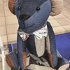 デニムでできたクマやネコのぬいぐるみも♡ ラフォーレ原宿と岡山デニムがコラボした『Sustainable Project Laforet×Okayama Denim』開催中!<レポ>
