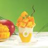 KURA ROYAL(クラ ロワイヤル)から『まるごとマンゴーパフェ』が全国のくら寿司にて限定販売!キャラメルを使用したタピオカドリンク2種も登場♪