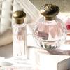 ビーチの波に飛び込む少女のようにみずみずしい香り♪ TOCCA Beautyで人気の夏限定「シモネの香り」が定番商品としてラインアップ!