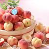 旬の「もも」をまるごと楽しめる!フルーツパラダイス『もも食べ放題』スイパラ全店舗にて開催!!『メロン食べ放題』も同時に楽しめちゃう♡