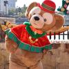 東京ディズニーランド&東京ディズニーシーがクリスマスらしい華やかな装いに♡ クリスマスの雰囲気を楽しめるグッズ&メニューも期間限定で発売!