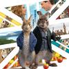 映画『ピーターラビット2/バーナバスの誘惑』2021年2月5日(金)公開☆ 日本版ポスターも解禁!