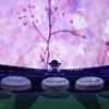 「桜ウェルカムドーム」でお花見気分♪ コニカミノルタプラネタリウム3館にて、満開の桜を見上げることができるウェルカム映像を投映!