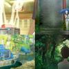 『となりのトトロ』オマージュのシーンも・・・!明石家さんまプロデュース アニメ映画『漁港の肉子ちゃん』肉子ちゃんとキクコの日常が描かれた場面写真が一挙解禁!!
