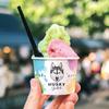 旬のフルーツや野菜をたっぷり使用♡『ハスキージェラート』がラフォーレ原宿に期間限定でオープン!