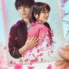 主演 中島健人×松本穂香 はかなくも美しい、忘れられない恋をした。Netflix 映画『桜のような僕の恋人』ティーザー予告映像&ティザーアートが解禁!